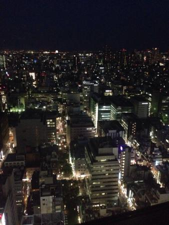 Shangri-La Hotel, Tokyo: Hotel views
