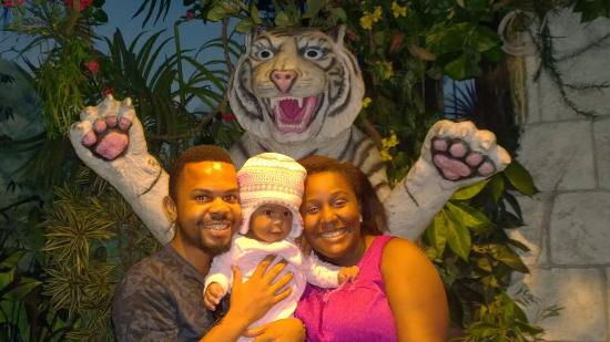 """Downtown Aquarium: With the white tiger ( the live one was in his """"Palace"""" nearby"""
