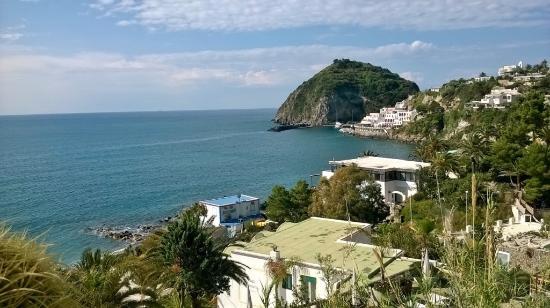 Foto de Hotel Terme Ferdinando