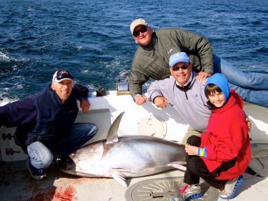 Capeshores Charters