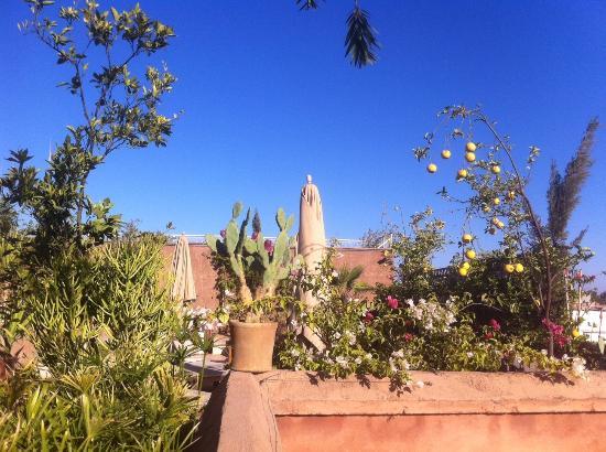 Al Ksar Riad & Spa : Marrakech Riad Garden Al Ksar Spa