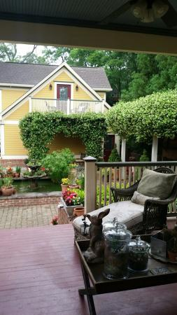 The Social Goat Bed & Breakfast: 20160518_082903_large.jpg