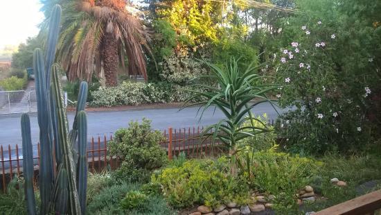 Calitzdorp, جنوب أفريقيا: Garden