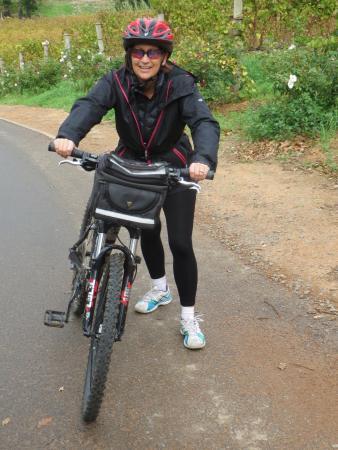 Bike and Saddle Photo