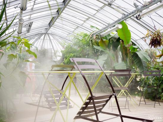Serre - Picture of Jardin des Plantes, Nantes - TripAdvisor