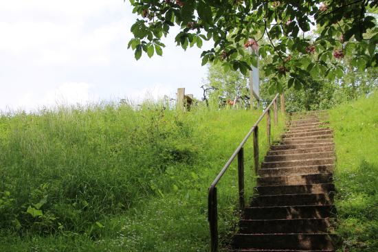 Bornem, Belgia: Laat je fiets op de dijk staan en neem het trapje naar beneden