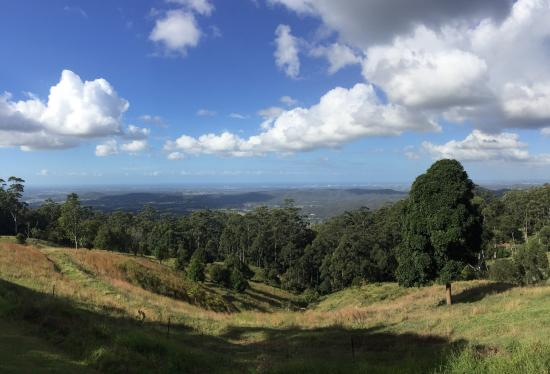 Mount Tamborine, Australien: photo9.jpg