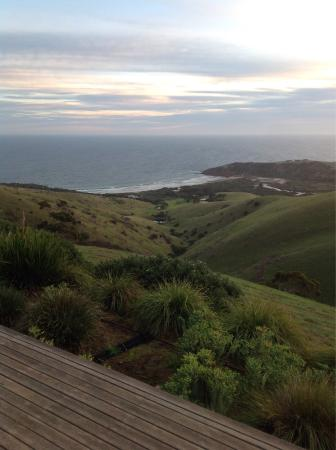 Snellings View: photo2.jpg