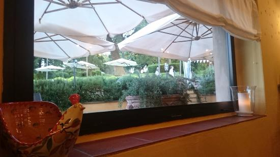 Signa, Itália: Piccola veduta del bellissimo parco adiacente il ristorante