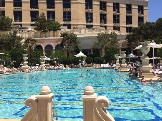 Pool Area Picture Of Bellagio Las Vegas Las Vegas Tripadvisor