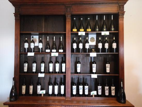 Baone, Италия: Прекрасные вина собственного производства.