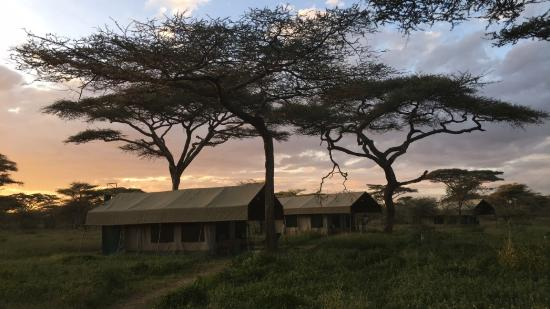 Serengeti Halisi Camp: Beautiful location close to wildlife