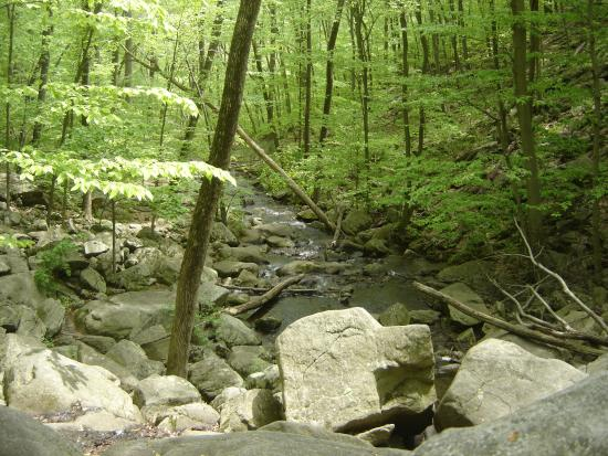Long Valley, Nueva Jersey: The trail runs along the river in places.