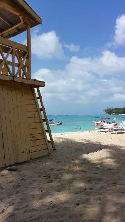 Surfside Restaurant & Beach Bar: 20150101_165554_large.jpg