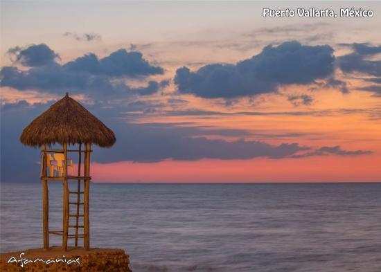 vista desde la terraza del coco tropical.