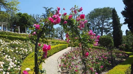 Villa & Jardins Ephrussi de Rothschild - Picture of Villa & Jardins ...