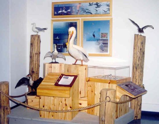 Gimli, Canadá: Lake Winnipeg Visitor Centre