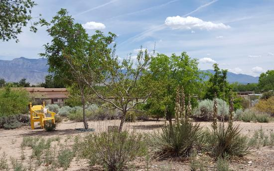 Corrales, NM: Lovely Gardens.