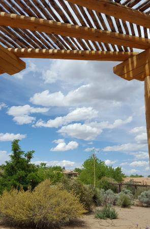 Corrales, NM: The perfect spot to curl up with a good book.