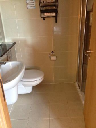Handi-chair in shower but bathroom too small for wheel chair ...