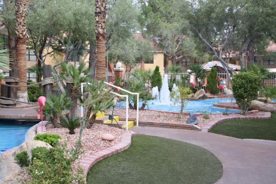 Westgate Flamingo Bay Resort Las Vegas Nv Omd 246 Men Och Prisj 228 Mf 246 Relse Tripadvisor