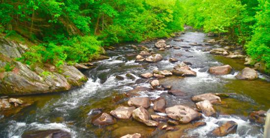 Robbinsville, Carolina del Norte: Tellico River