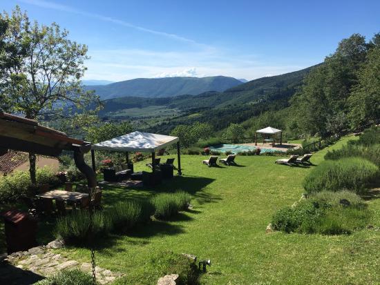 Sesto Fiorentino, Italia: Lo stupendo giardino