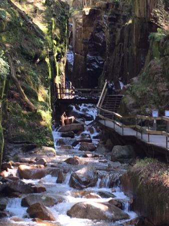 Franconia, NH: walk to Flume