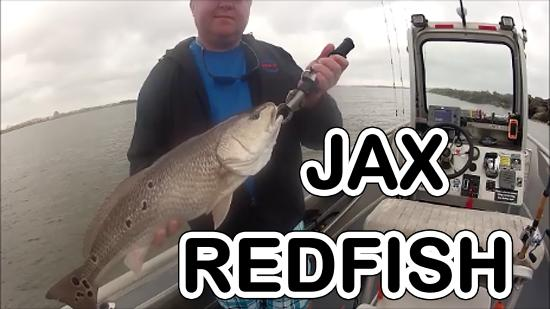 Www captdaves com picture of capt dave 39 s sport fishing for Capt dave fishing