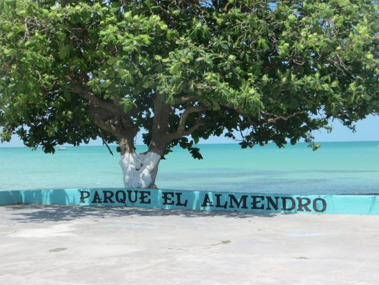 Sarteneja, Belize: The Community Park Parque el Almendro