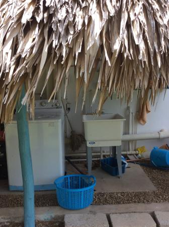 Sarteneja, Belize: Your laundry can be done too