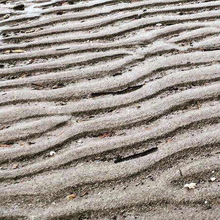 Edmonds, WA: patterns in the sand