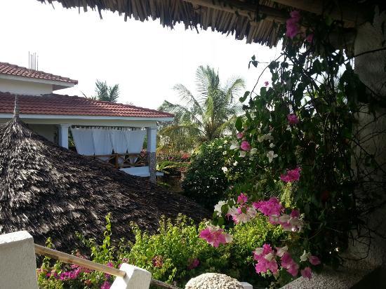 Jambo House Resort Picture