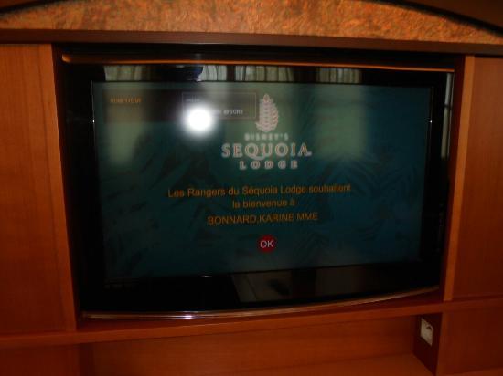 L 39 h tel sequoia le meilleur picture of disney 39 s sequoia for Hotel meilleur