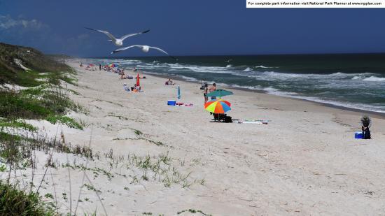 Canaveral National Seashore: Playalinda Beach