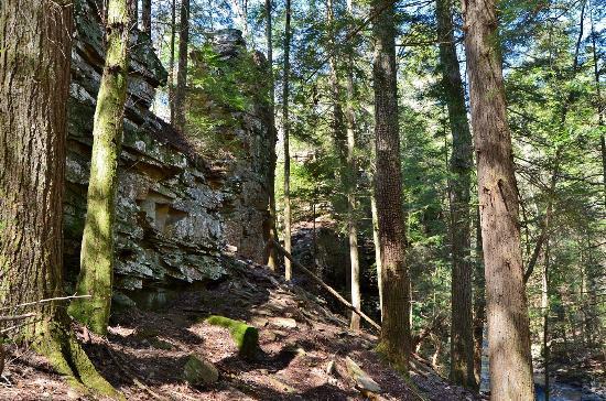 Grundy Forest Natural Area: Chimney Rocks
