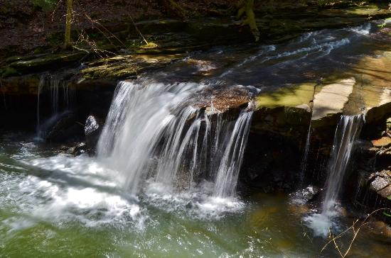 Grundy Forest Natural Area: Hanes Hole Falls