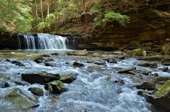 Grundy Forest Natural Area: Blue Hole Falls