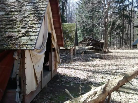 Sodus, Nova York: Early spring 2016 Barnstormer Excursion
