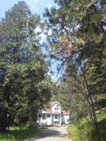 Tin lizzie inn prices b b reviews fish camp ca for Fish camp ca hotels