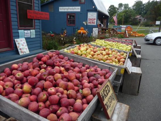 Sperryville, VA: Fall is our favorite! Apple picking galore