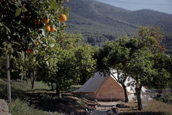 Alhaurin el Grande, สเปน: Telt fra haven - Yogaferie med naturlig-rytme.dk
