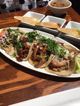 Tacolicious: variety of tacos