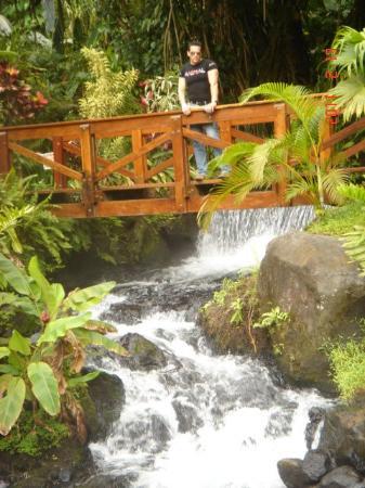 Tabacon Grand Spa Thermal Resort Photo