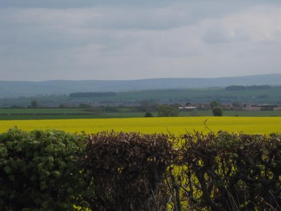 East Lothian, UK: Walking on the main road now, but still a lovely view