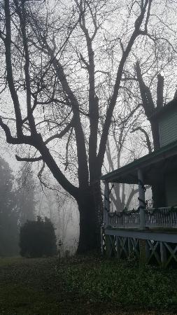 ออเรนจ์, เวอร์จิเนีย: Greenock Manor