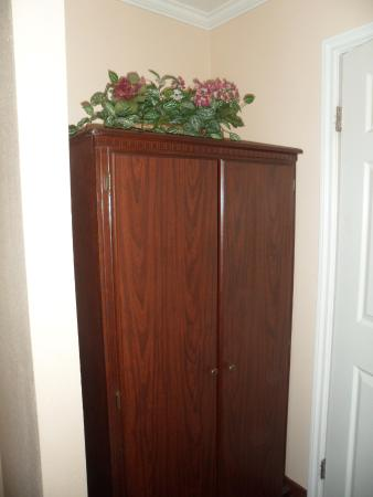 """Americas Best Value Laguna Inn & Suites: There was dust all over those """"decorative flowers."""""""