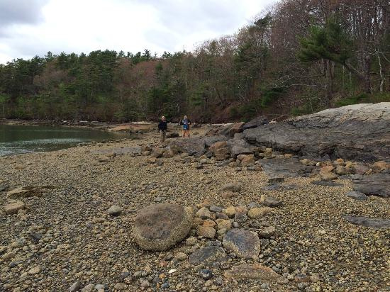 Newcastle, Мэн: Lovely, quiet, rocky beach mid way during trail.