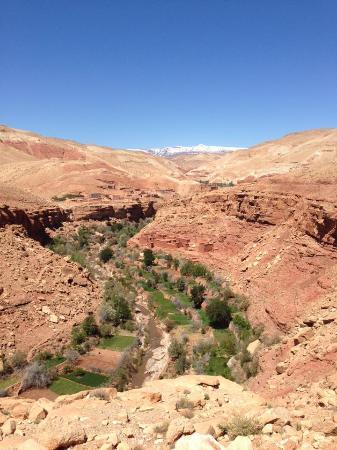 Sahara Atlas Tours -Day Tours : ONILA