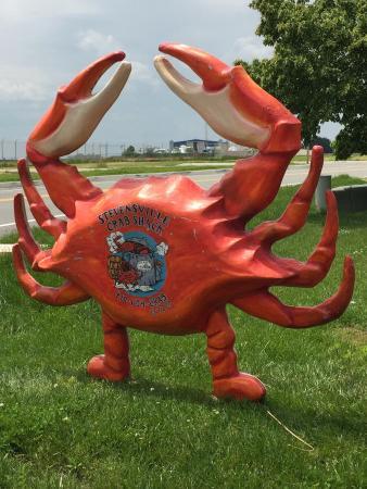 Stevensville, MD: photo0.jpg